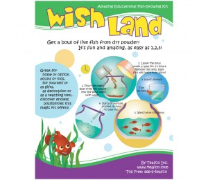 Wishland Fish - Fun & Educational Set