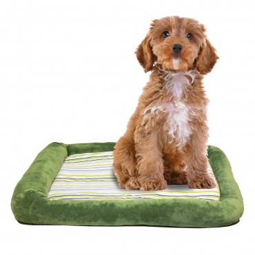 Otto Ruff + Ready Pet Bed Green Large With Cooling Pad - 34 in