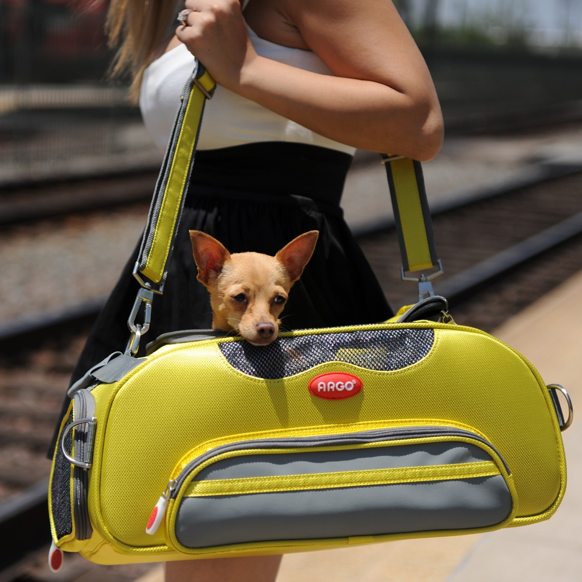 8a3a02f570 ARGO Aero-Pet Airline Approved Carrier Sherbet Yellow Small - 18.5 in · Zoom
